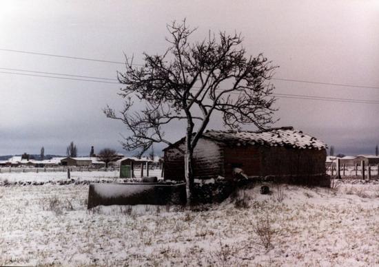 Fotos antiguas del la Nieve 12