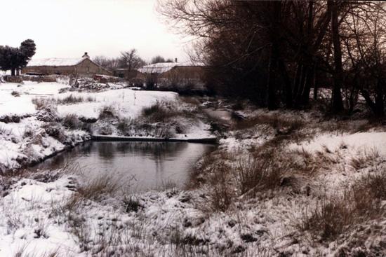 Fotos antiguas del la Nieve 13