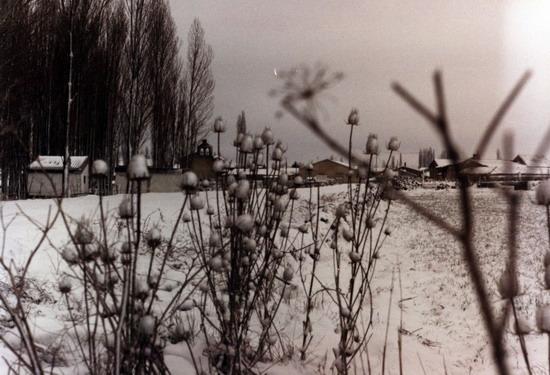 Fotos antiguas del la Nieve 16